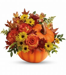 Warm Fall Wishes  from Mona's Floral Creations, local florist in Tampa, FL