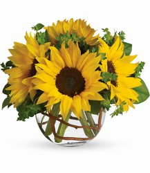 Sunny Sunflowers from Mona's Floral Creations, local florist in Tampa, FL