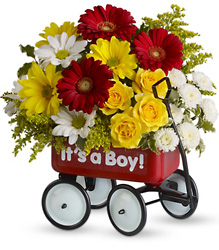 Baby's Wow Wagon  from Mona's Floral Creations, local florist in Tampa, FL
