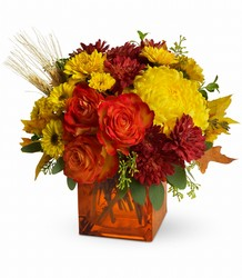 Autumn Expression from Mona's Floral Creations, local florist in Tampa, FL