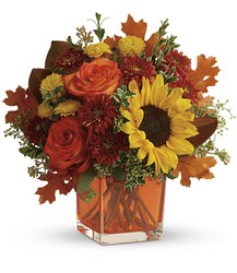 Hello Autumn from Mona's Floral Creations, local florist in Tampa, FL